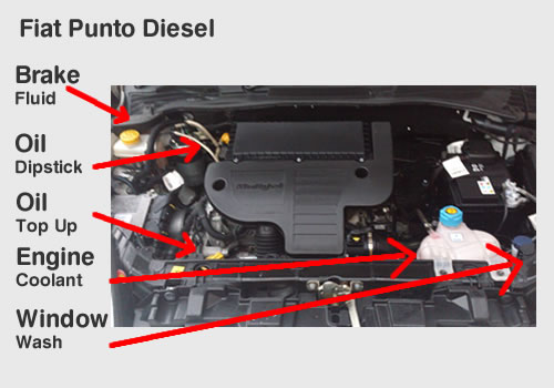 Showmwtellmefiatpunto on Petrol Engine Diagram